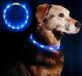 lichtgevende honden halsband blauw