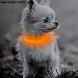 PUPPY - LICHTGEVENDE LED HONDEN HALSBAND USB OPLAADBAAR 20-30CM - Oranje_