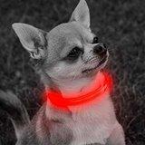 PUPPY - LICHTGEVENDE LED HONDEN HALSBAND USB OPLAADBAAR 20-30CM - ROOD_