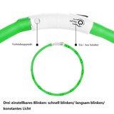 PUPPY - LICHTGEVENDE LED HONDEN HALSBAND USB OPLAADBAAR 20-30CM - GROEN_
