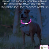 Led halsband Hond Roze