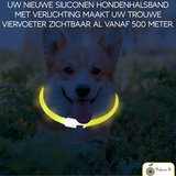 Led halsband Hond Geel