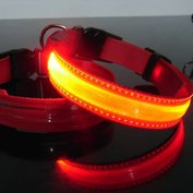 Led Hondenhalsband type 1 large rood