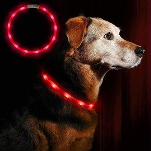 lichtgevende halsband rood