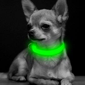 PUPPY - LICHTGEVENDE LED HONDEN HALSBAND USB OPLAADBAAR 20-30CM - GROEN