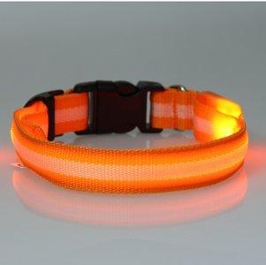 led hondenhalsband type 2 oranje large