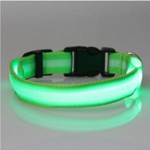 led hondenhalsband type 2 groen