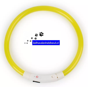 led hondenhalsband type 4 geel medium