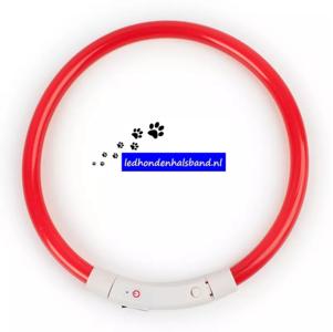 led hondenhalsband type 4 rood