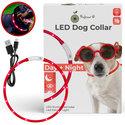 Led halsband Hond Rood