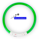 led-hondenhalsband-type-4-groen-small