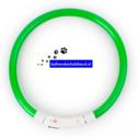 led-hondenhalsband-type-4-groen-large